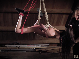 Submissive brunette in suspension bondage gets whipped