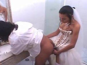Bruna kinky shemale bride