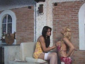 Walquiria and Renata attractive trannies in action